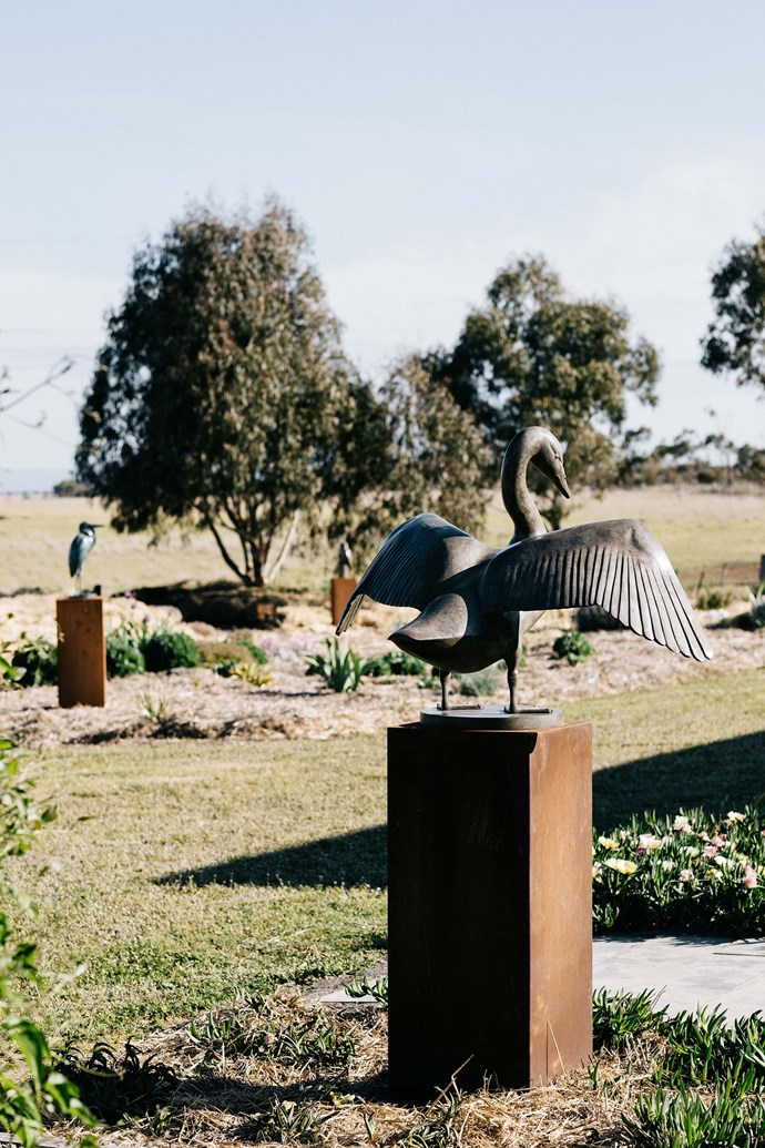 A limited edition life-size black swan in the Tarawil garden.