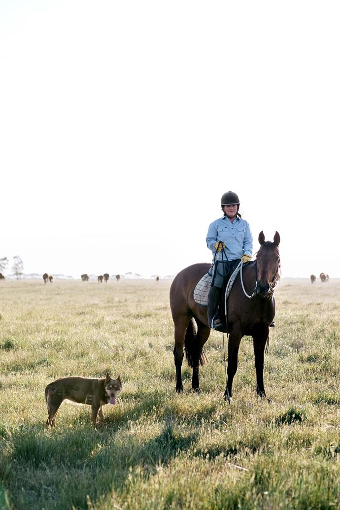 Lucy McEachern and her stock horse Fenella, bred by Lucy's mother Kate, with Rosie the kelpie mustering on Wingiel, the McEachern family's farm.