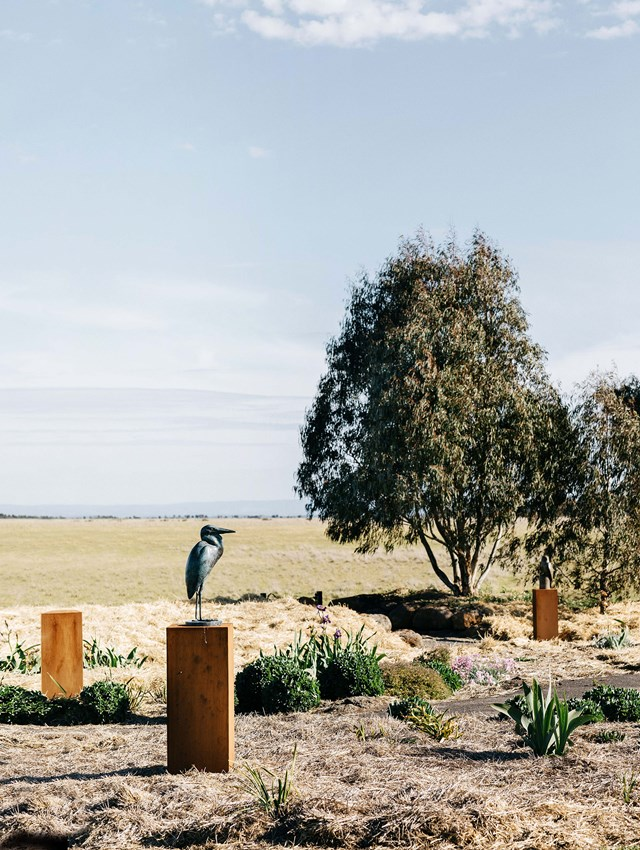 "[Artist Lucy McEachern's](https://www.homestolove.com.au/garden-sculpture-artist-20216|target=""_blank"") life-size bird sculptures have won numerous awards. Carved from bronze, she says her love of birds began as a child, when she would observe brolgas, wedges, rosellas and crested pigeons at her parent's property, Wingiel just 55 kilometres west of Geelong. ""It's the shapes and personalities of different birds that get me excited, and that will dictate what I am going to make,"" Lucy says."