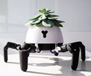 A robot that will keep your indoor plants alive