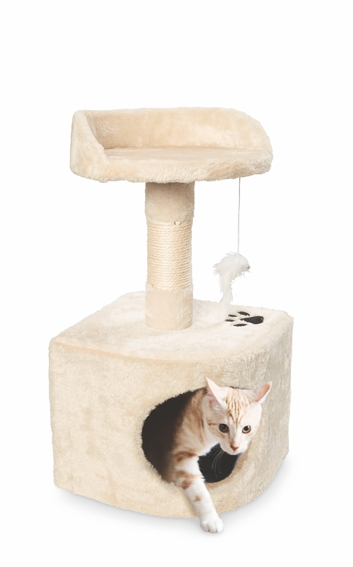 Cat Scratching Post, $19.99.
