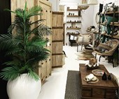 Best boutique homewares stores on the Central Coast