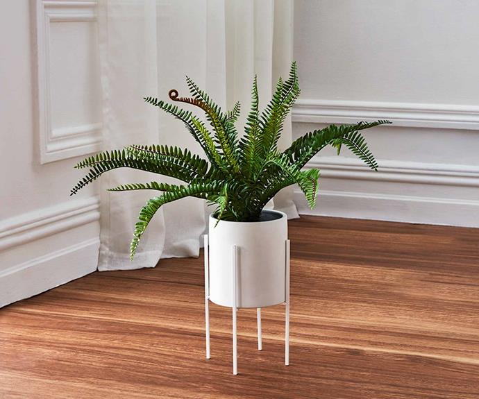 Potted artificial **fern on stand**, $39.
