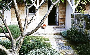 5 lush entry garden ideas for your home