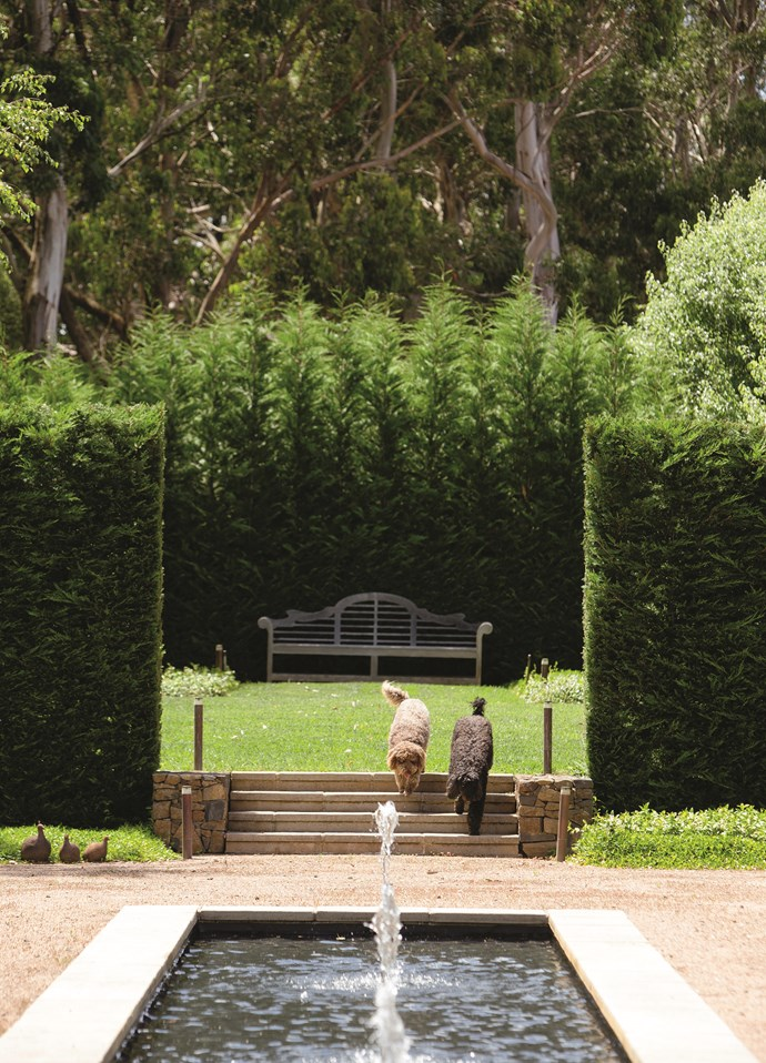 Tall walls of Leighton green cypress (Cupressus x leylandii) are used extensively to frame various rooms within the garden.