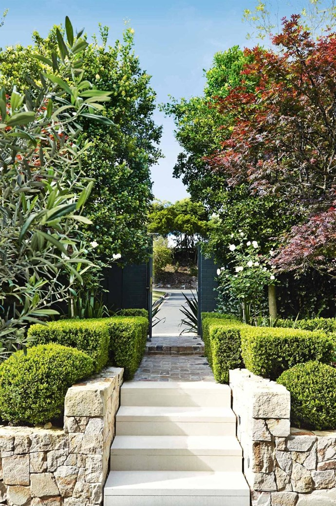 """Striking seasonal plants means the look of this garden is constantly changing. The sculptural pruned hedges to the front complement the rigid form of the entryway, adding height and visual depth. *Design: [Outdoor Establishments](https://outdoorestablishments.com/