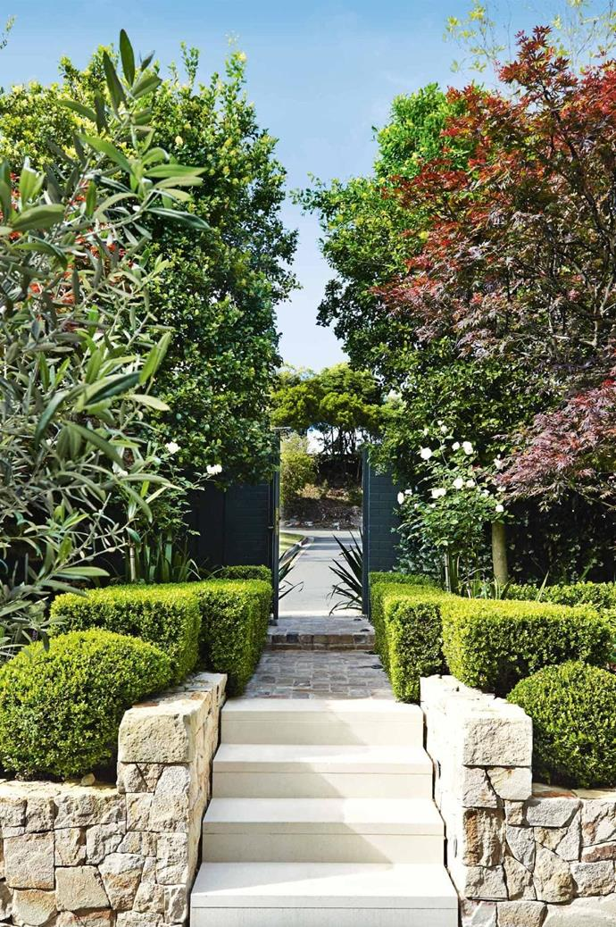 "Striking seasonal plants means the look of this garden is constantly changing. The sculptural pruned hedges to the front complement the rigid form of the entryway, adding height and visual depth. *Design: [Outdoor Establishments](https://outdoorestablishments.com/|target=""_blank""