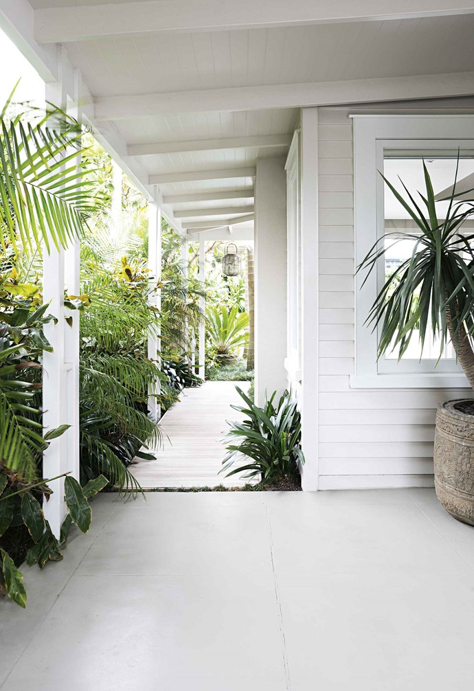 An array of lush plants set against a white weatherboard backdrop create a relaxed tropical entry. *Styling: LeeAnn Yare | Photography: Larnie Nicolson*.