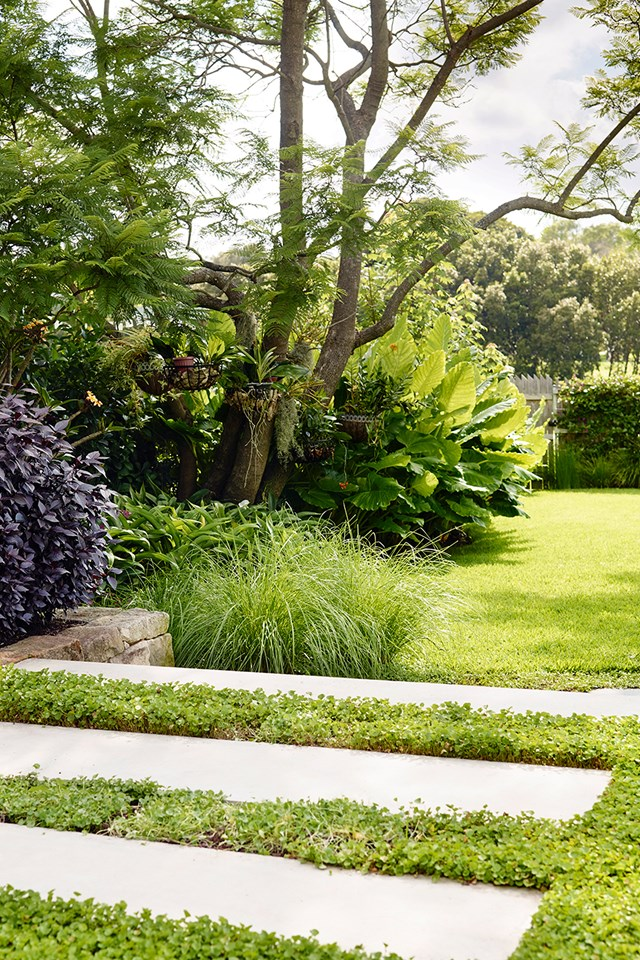 Aerate your lawn in spring and again in autumn to help water penetration and encourage strong root growth.