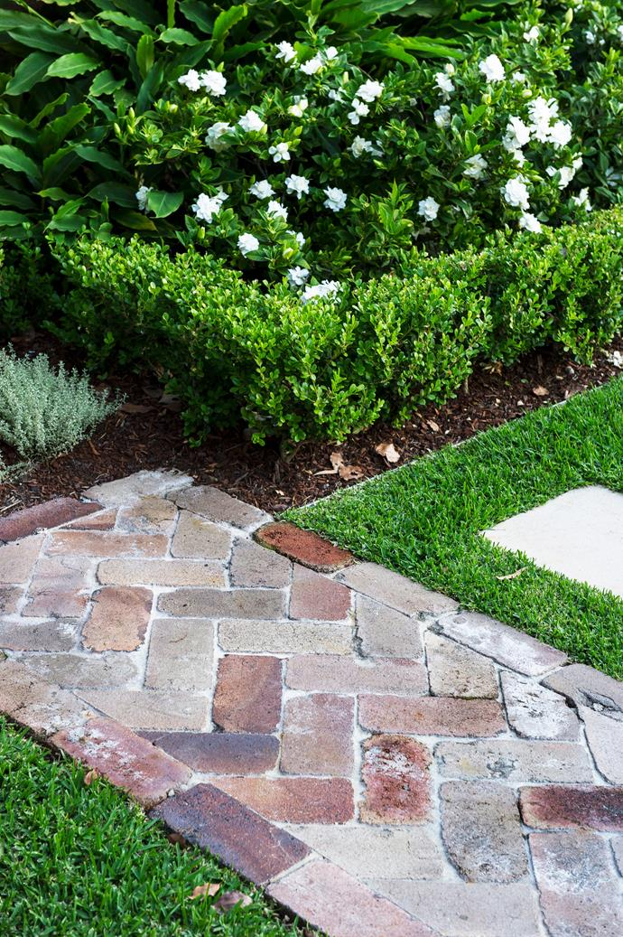 Healthy soil is the key to a healthy lawn. *Photo: Brigid Arnott / bauersyndication.com.au*