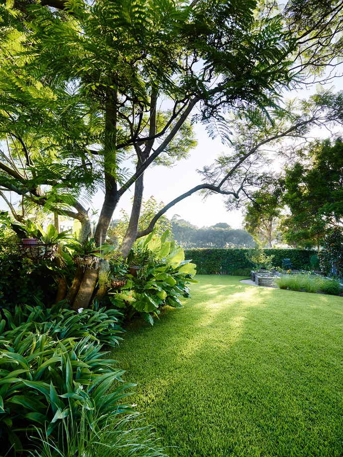 For a soft, fluffy lawn, mow it on the highest setting your mower permits. *Photo: Anson Smart / bauersyndication.com.au*