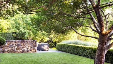 Expert lawn care tips for Australian gardens