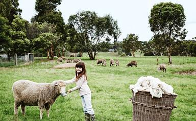 On the farm with an Australian merino wool clothing company