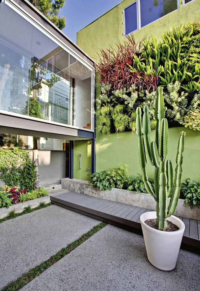 "The owners of this Californian home wanted to add a bold outlook to enjoy from the glass-lined passage. Working with architects Lean Arch Inc. and garden designer [Jones Landscapes](http://joneslandscapesla.com|target=""_blank""