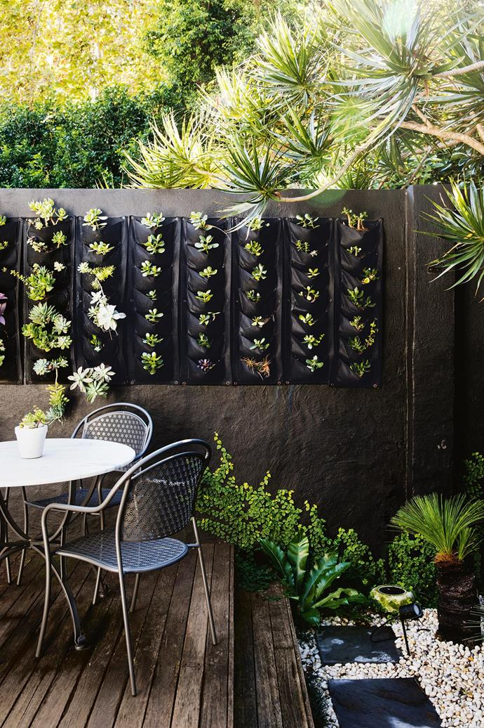 "Vertical hanging planters are the perfect makeshift vertical garden for this [inner-city terrace's](https://www.homestolove.com.au/minimalist-inspiration-from-a-light-filled-terrace-18366|target=""_blank"") courtyard, adding a soft contrast to the charcoal grey wall."