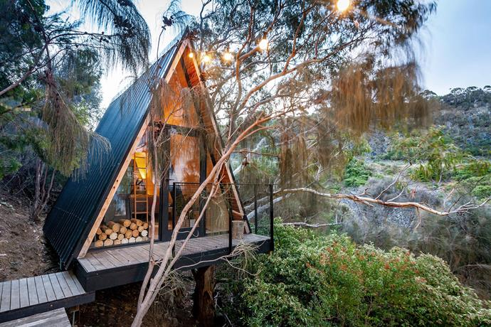 The structure is supported by a gum tree and a hill. Views of bushland surround the treehouse.