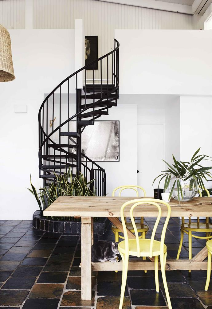 "**Dining area** Yellow Thonet 'No.18' bentwood chairs add colour. Smokey the cat also likes the [Eclectic Style](https://www.eclecticstyle.com.au/|target=""_blank""