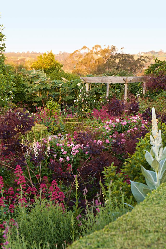 Shades of pretty pink light up this section of the garden.