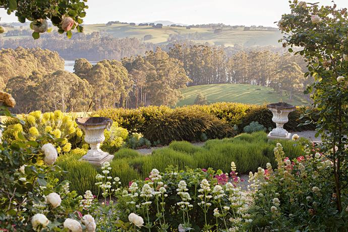 """A view down into the paddocks and to the Tarago Reservoir in the distance. The two large urns were lifted into position with a crane 15 years ago. The surrounding English lavender gives the impression the pots are floating. """"We've made it a garden to explore and wander through, but it's also for relaxing and dreaming,"""" David says. What visitors find is a wonderful surprise. It's only as you walk around the house or through the living area that the panoramic views and the terraces of [dazzling roses](https://www.homestolove.com.au/romantic-rose-gardens-13868 target=""""_blank"""") are revealed. David, with Philip's input and encouragement, designed the series of terraces across the slope in the manner of Italian gardens, with a wide gravel path creating a central axis through to the lowest garden terrace. """"I see it as a series of descents to the 'lake,'"""" David explains."""