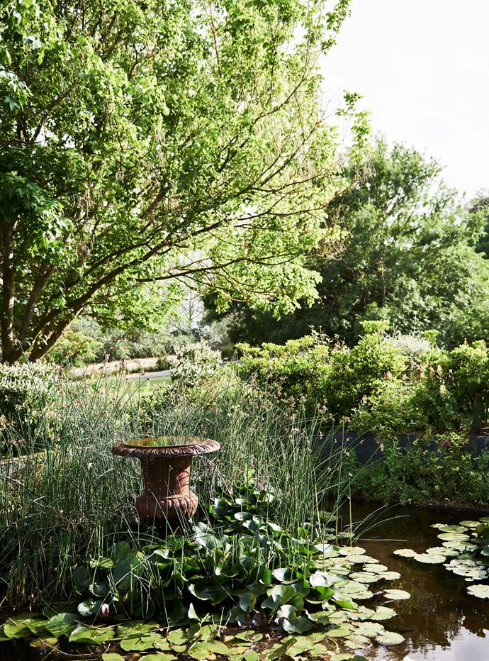 The property's expansive gardens include a pond.