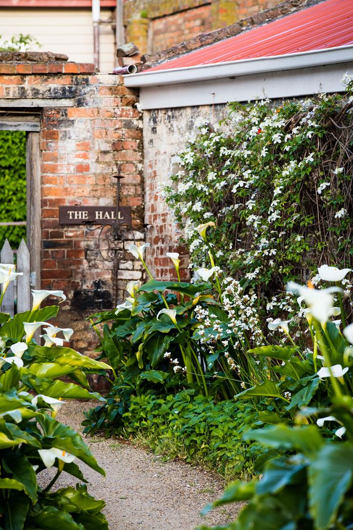 A narrow pathway weaves among arum lilies and Clematis montana to The Hall, a self-contained cottage.