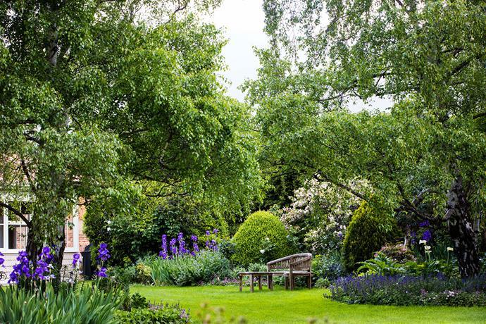 A vista of the front garden.