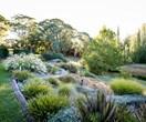 5 budget garden ideas that will save you money