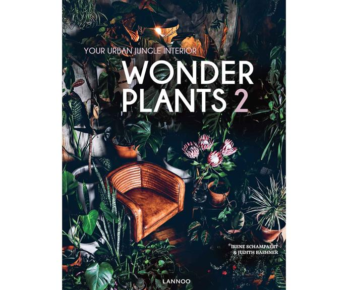 This is an edited extract from *Wonder Plants 2: Your Urban Jungle Interior* by Irene Schampaert & Judith Baehner ($75, Lannoo).
