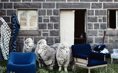Turn up the heat with stylish wool and felt homewares
