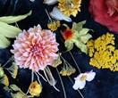 Autumn flowers: tips for creating a seasonal arrangement