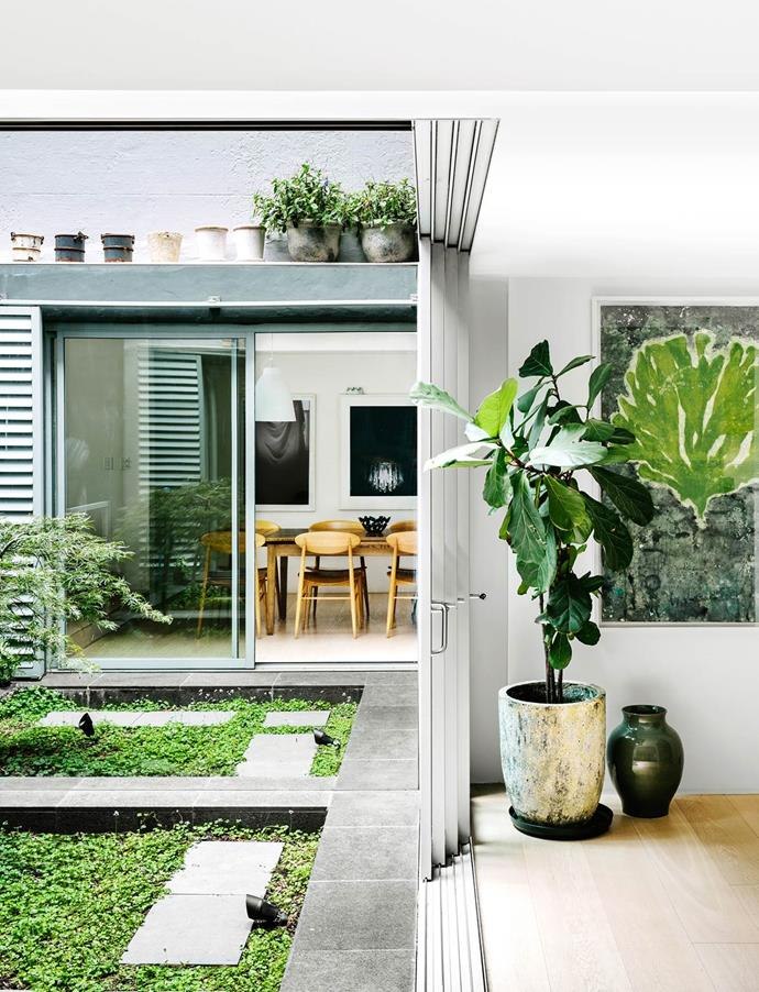 """A serene [internal courtyard](https://www.homestolove.com.au/gallery-scandi-style-terrace-house-with-space-to-spare-1668