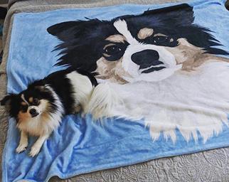 printed pet blanket