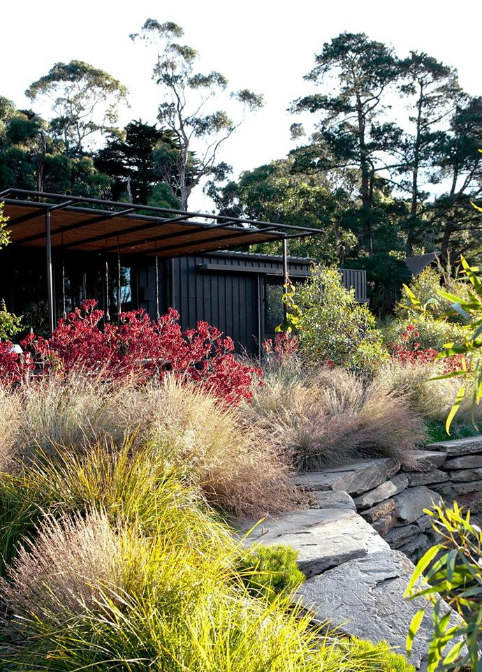 Walls of stacked stone form the sunken sitting area beside the lake. Tussocks and Banksia spinulosa 'Birthday Candles' soften the edge of the retaining wall.