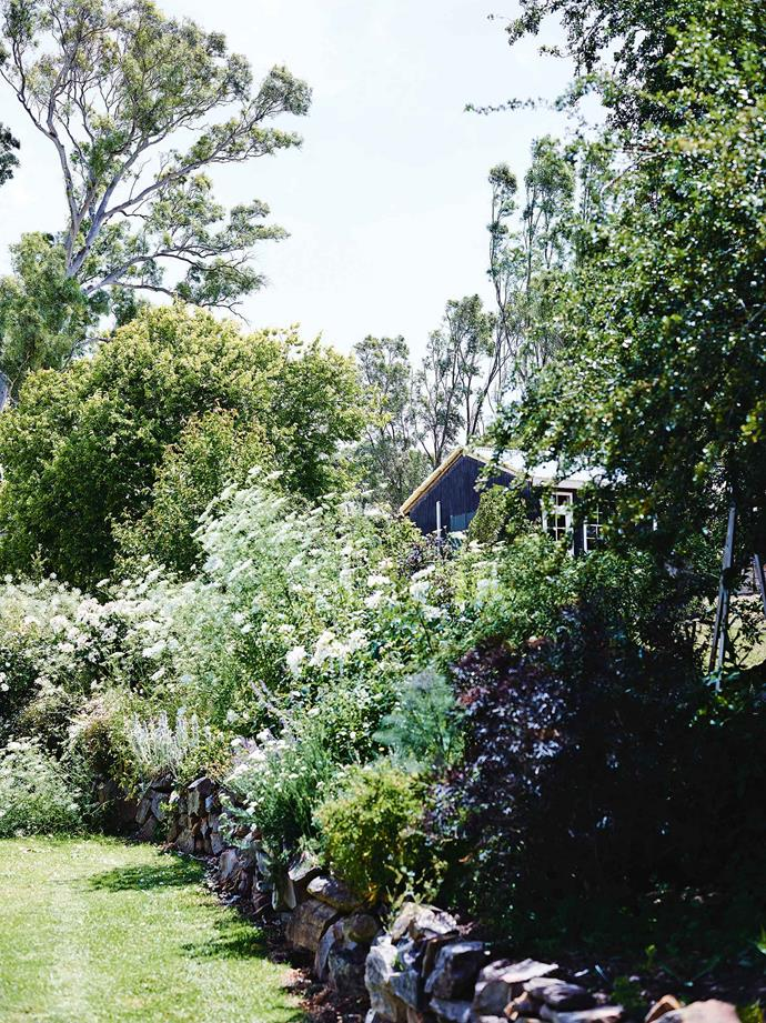"Her craving for her own plot of earth was one of the reasons the couple returned to [South Australia](https://www.homestolove.com.au/factory-home-conversion-13873|target=""_blank""). ""The love of gardening drew me, and we started looking in the Hills for a place where we could grow things,"" Morgan says. They found their tiny mid-19th-century stone cottage and fell in love with it, but didn't believe they had a hope of buying it."