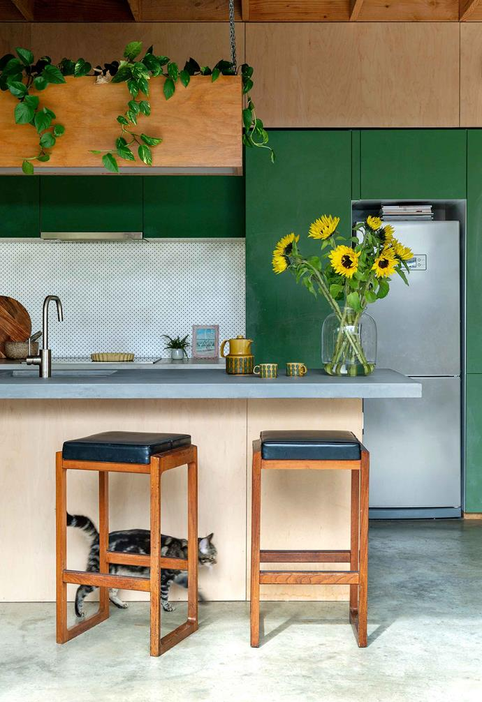 "With three young children running through this [small eco-friendly house](https://www.homestolove.com.au/small-eco-friendly-house-19983|target=""_blank""), painting the kitchen cabinets with White Knight 'Chalkboard Green' paint was a no brainer. Not only has the kitchen become a flexible art canvas for the kids, but the paint echoes the vintage aesthetic that runs throughout the home."