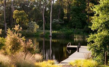 A Mornington Peninsula garden with a picture perfect lake