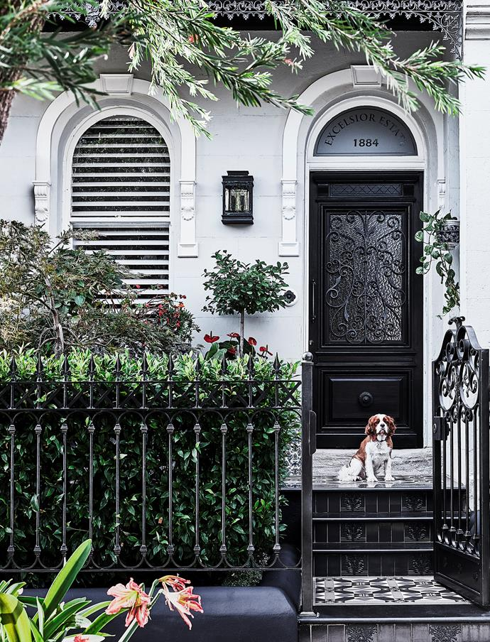 Walter, the owners' cavalier King Charles spaniel. The signage above the door references the area's heritage, and the salvaged door has a cathedral-glass window that opens for ventilation.