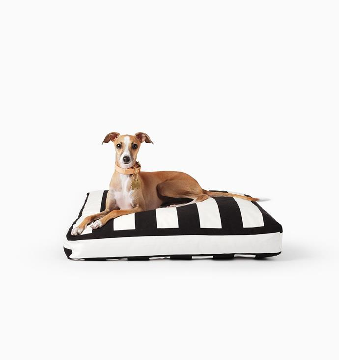 "This 100% cotton dog bed with a recycled PET fibre insert is perfect ""for the fashion forward doggo who loves a stripe."" Mister Woof Bed, $180, from [Mister Woof](https://misterwoof.net/collections/beds/products/mister-woof-bed-black-white-stripe?variant=10453129927