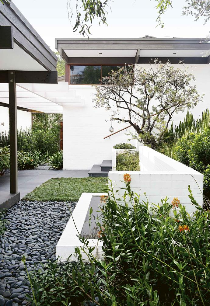 """He took inspiration from the 1960s architecture and kept a number of significant trees and shrubs, including palms, [camellias](https://www.homestolove.com.au/caring-for-camellias-9626