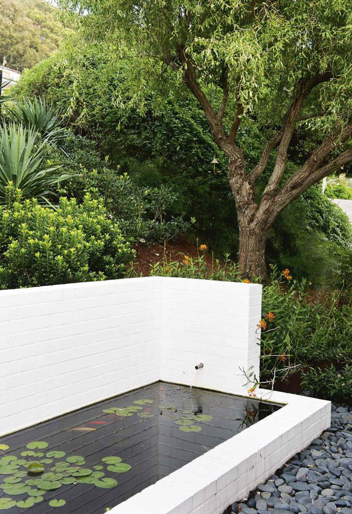 """The rear garden, which looks out onto a sports oval, presented a bigger challenge but also a solution. """"We'd planted a murraya [hedge](https://www.homestolove.com.au/how-to-grow-a-hedge-9576