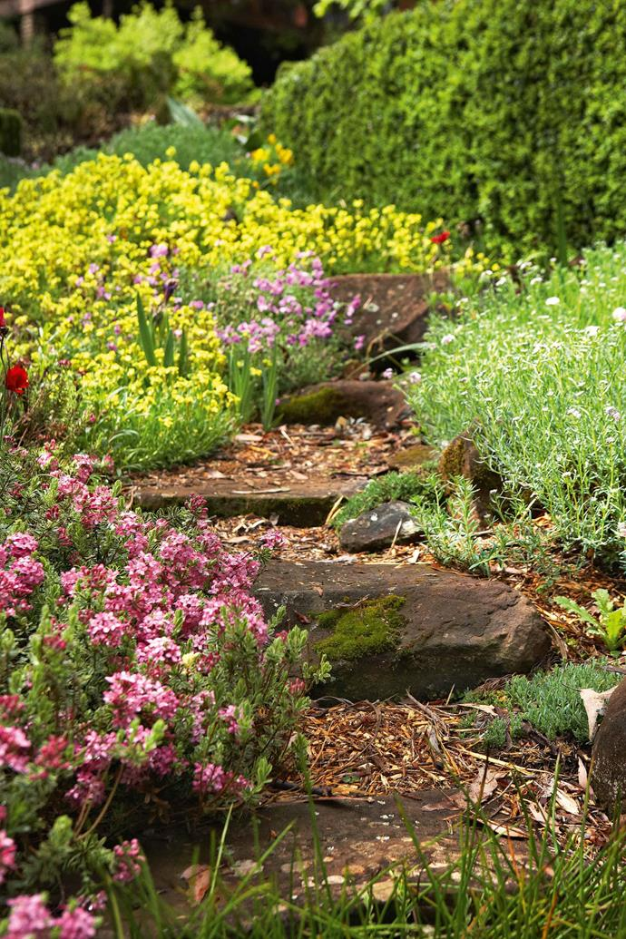 "The rock garden at the top of the property. Don's plan, when he first came here, was to have just a small garden and let the rest of the property return to bush. Gradually, though, he added another little strip of garden, then another and another until he reached what he decided would be the cut-off point halfway down the hill. ""I was definitely not going further than about here,"" he says, stopping near a cedar that had been transferred from a pot to the garden by the previous owner."