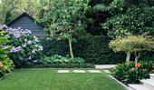 5 of the best lawn types for Australian gardens and how to choose the right one