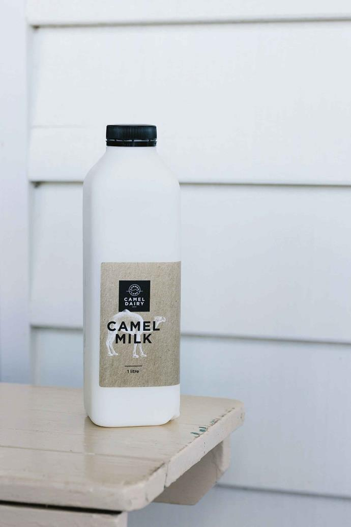 "One of many products available to buy under the [Summer Land Camel Dairy](https://summerlandcamels.com.au/shop/|target=""_blank""