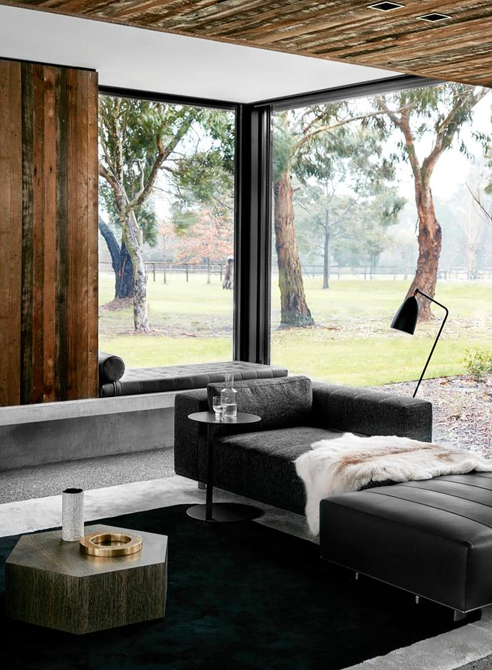 A Greta Grossman 'Grasshopper' floor lamp from Cult sits in front of generous windows that deliver uninterrupted views of native gums, blurring the lines between inside and out.