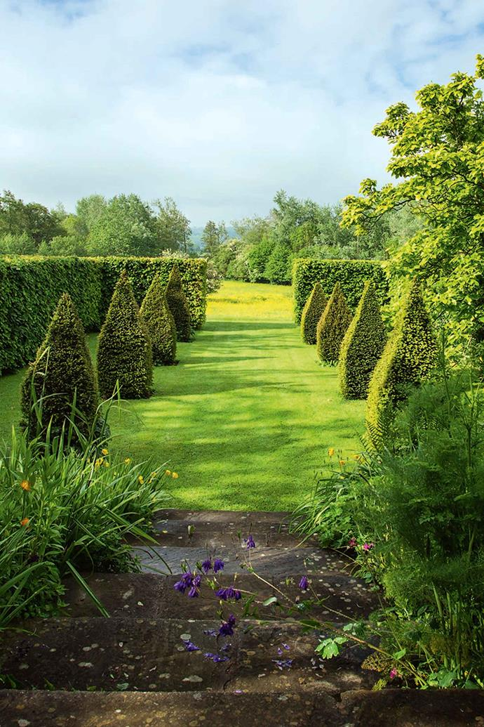 A wide variety of evergreen and deciduous topiary has been planted.