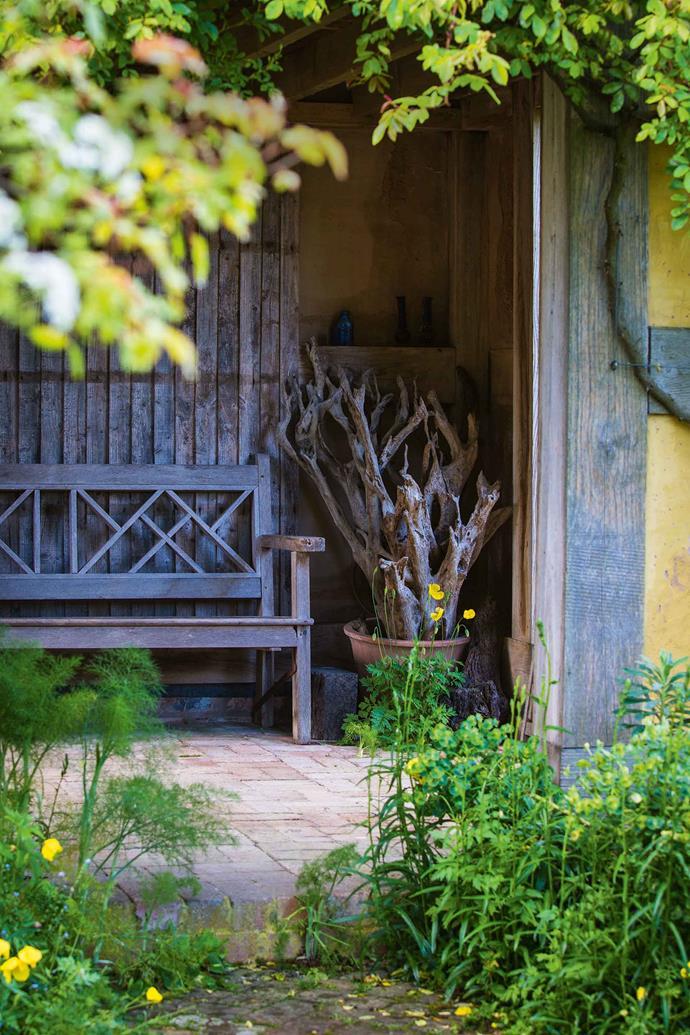 A quiet corner in the dovecote.