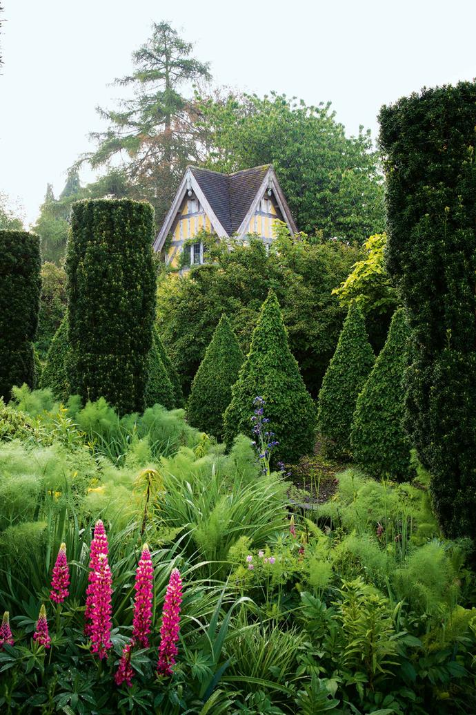 Vertical accents in the grounds include pink lupins, stately clipped Irish yews and evergreen box topiary.