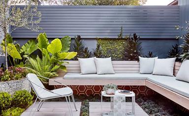 A Balmain terrace garden's dramatic transformation