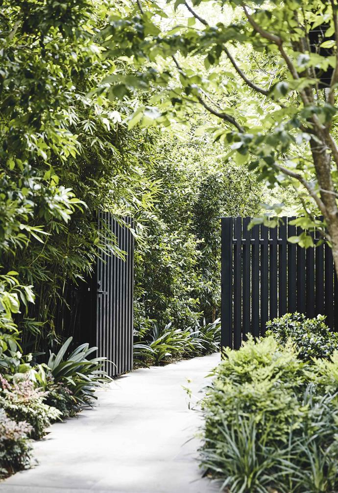 "**Paling power** A dark painted picket gate and fence blends into the greenery leading to this bayside Melbourne home by [Matyas Architects](https://www.matyasarchitects.com.au/|target=""_blank""