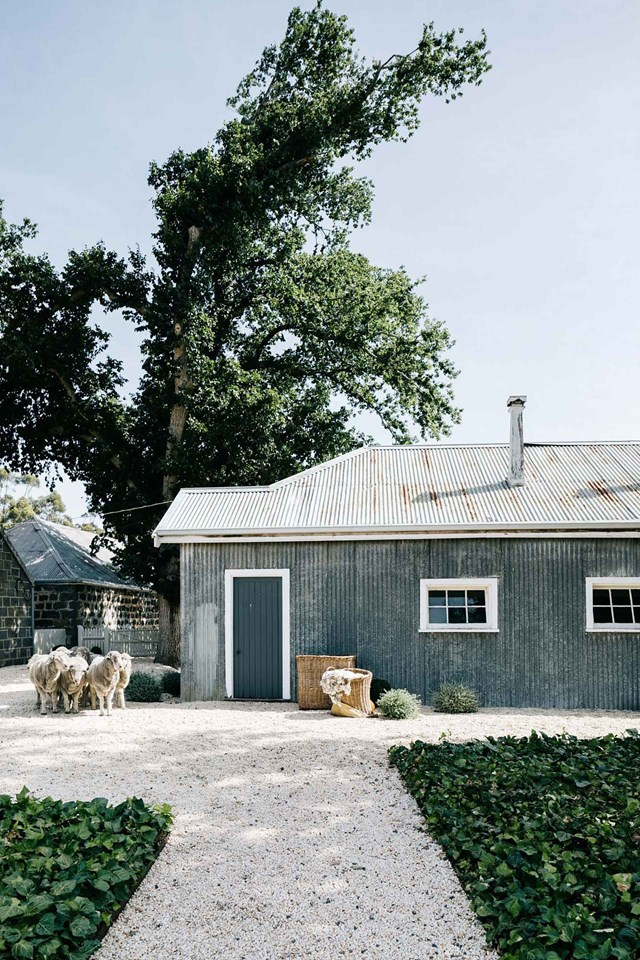 "Sheep gather outside the old generator room at this historic [bluestone farmhouse at Barunah Plains](https://www.homestolove.com.au/bluestone-farmhouse-20392|target=""_blank""), Victora, which provided power to the station until 1960.The old station workshop now serves as a garden shed."
